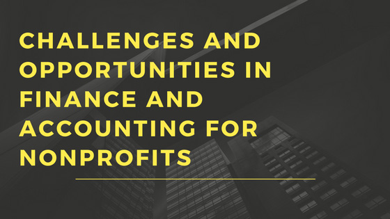 Challenges and Opportunities in Nonprofit Accounting