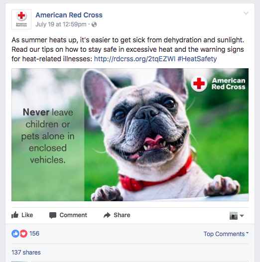 Red Cross - Social Media