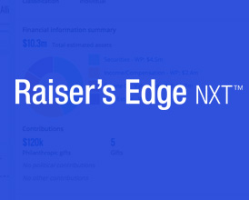 raisers edge consultants