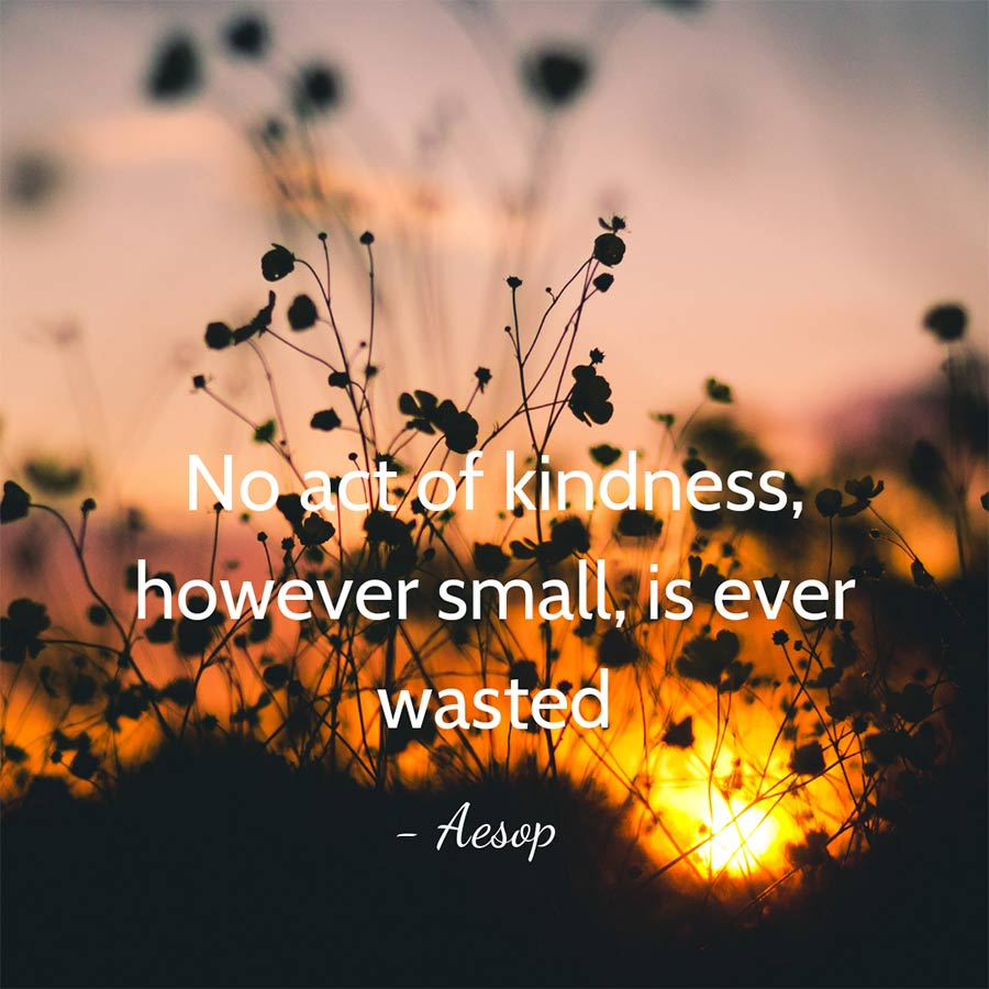 Quotes about giving for non profits