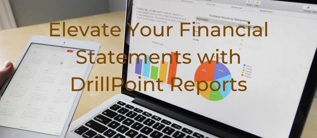 DrillPoint Financial Statements